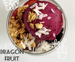 dragon fruit.png