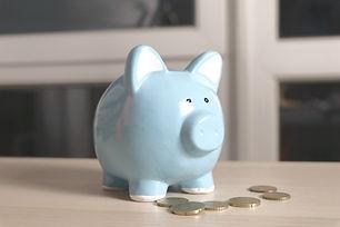 blue piggy bank near coin lot close-up photography_edited.jpg