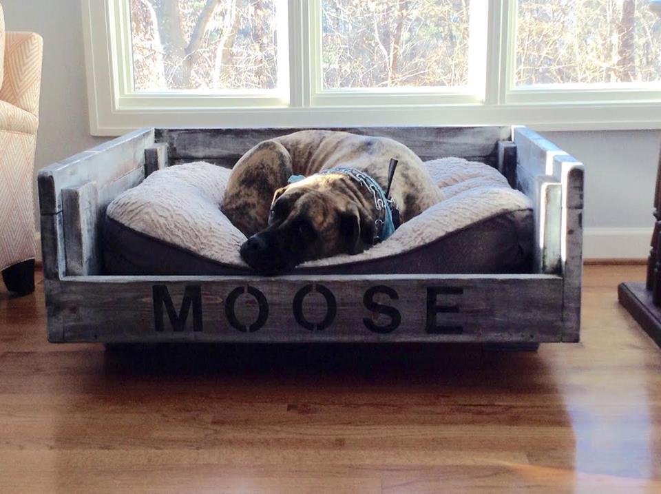 moose bed