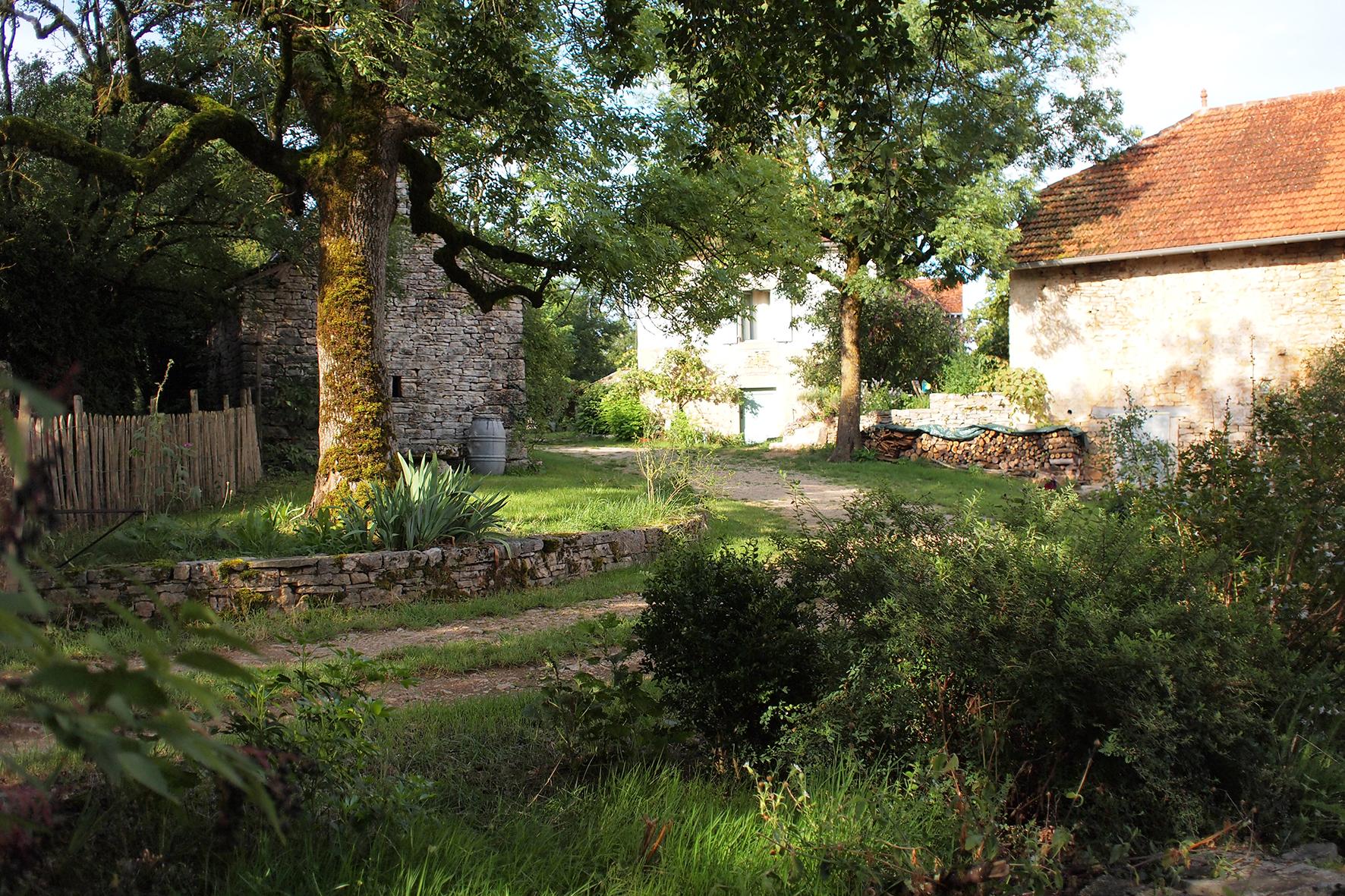 Le jardin depuis l'entrée