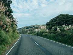 North Island Road