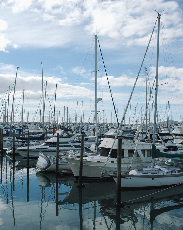 Westhaven Marina - Auckland
