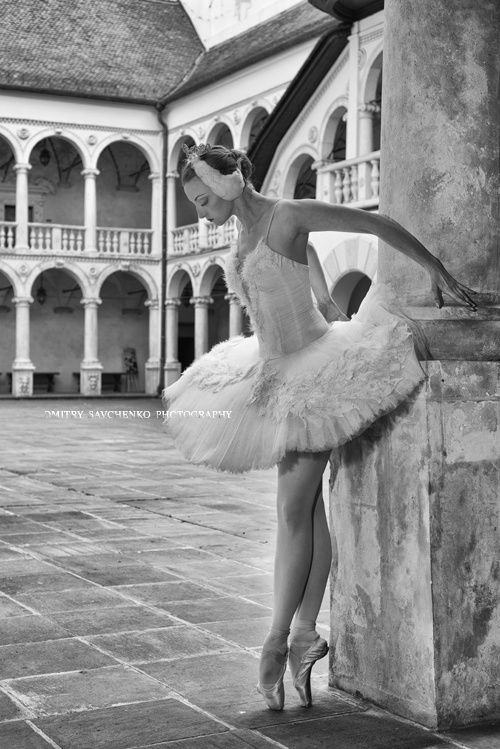 """White swan in the palace"""
