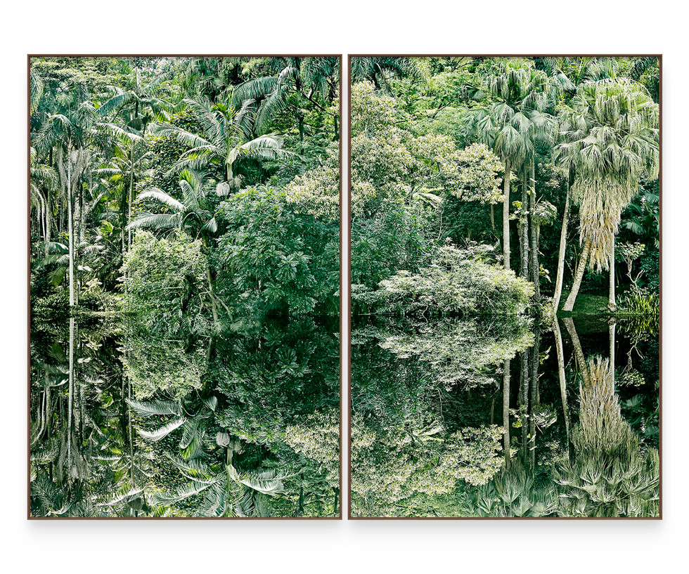 SAVE THE ATLANTIC FOREST #3