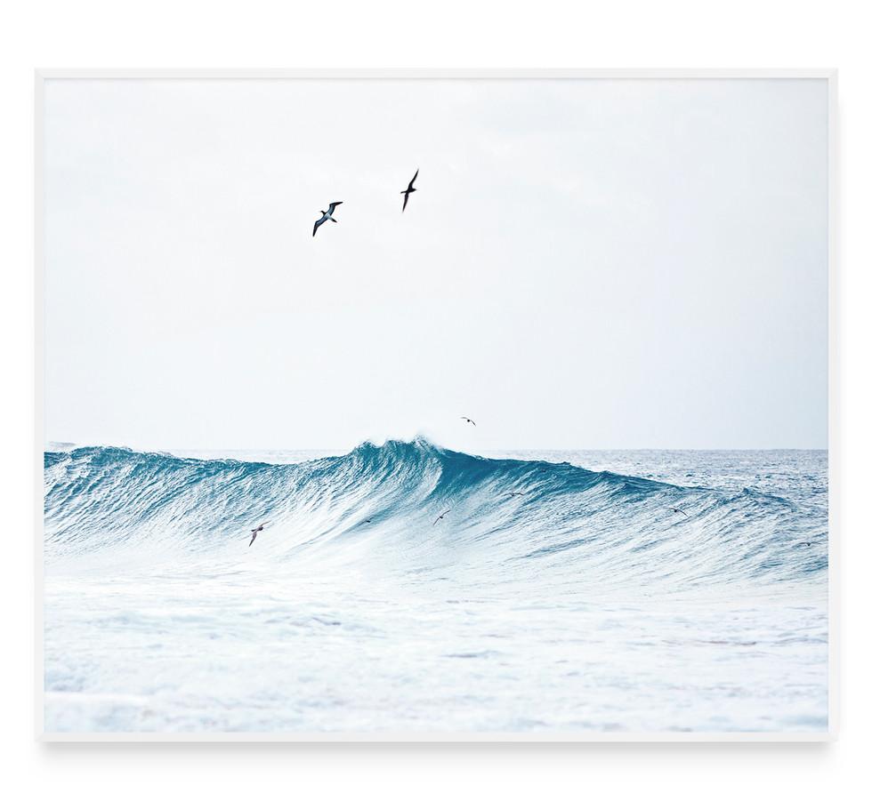 FLYING IN THE WAVES   Fernando de Noronha Archipelago