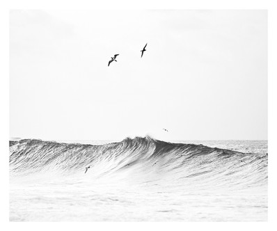 FLYING IN THE WAVE #1 B&W