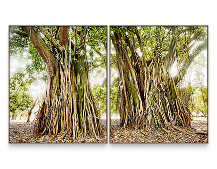 SAVE THE ATLANTIC FOREST | Diptych