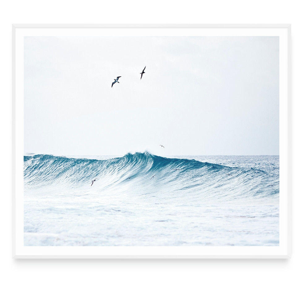 FLYING IN THE WAVES #1