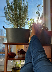 détente au soleil.jpg