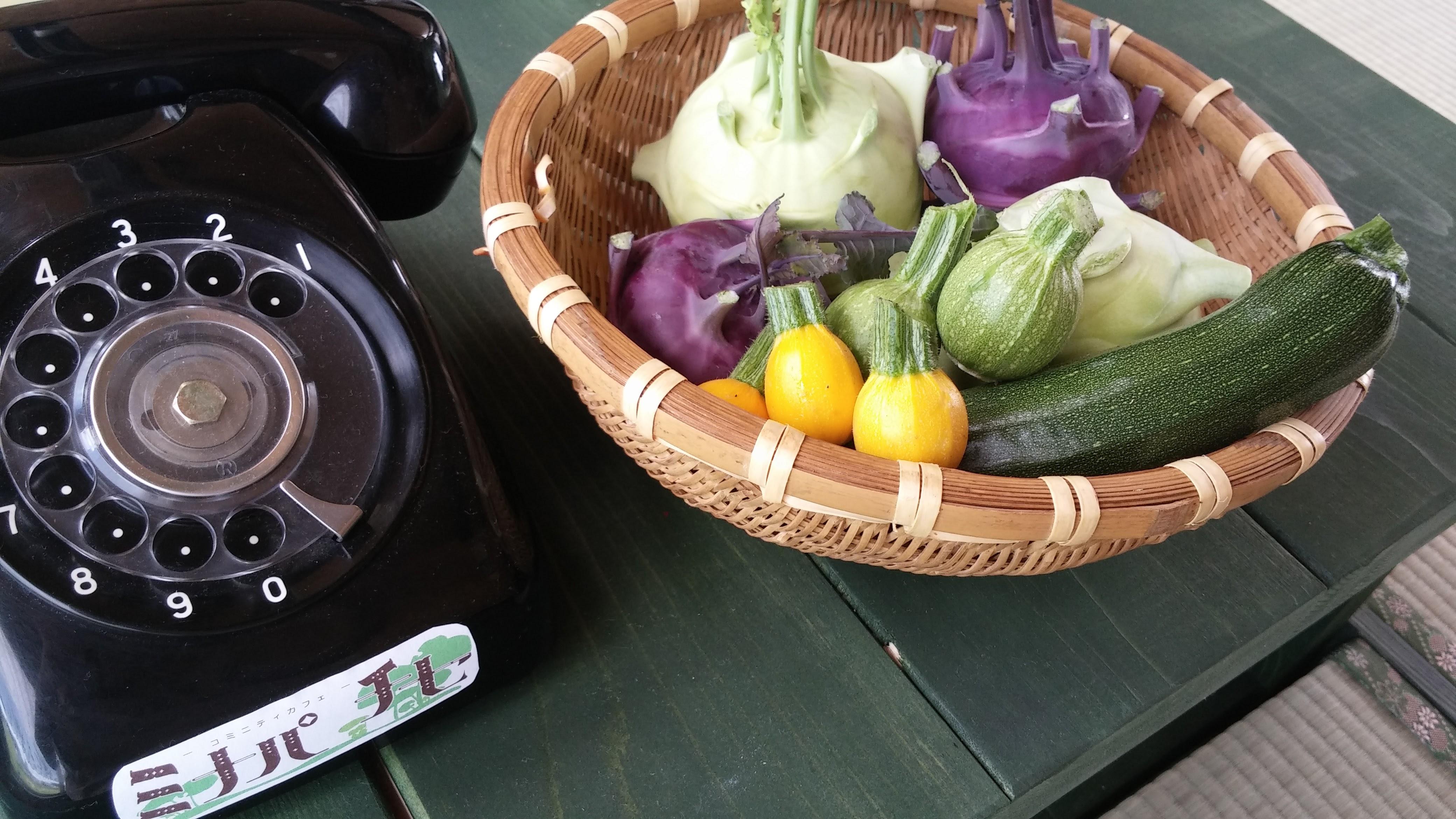 旬のお野菜♪
