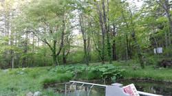樽前ガローの水源地