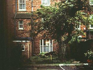 1981: Rear of 20 Billing Road