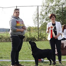 PiaBanachBalardor_LabradorZüchter_edited
