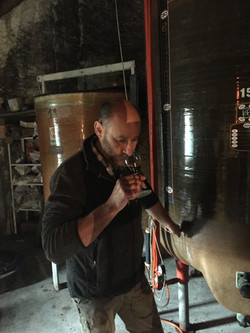 Contrôle de l'évolution du vin