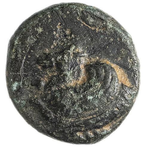 Троада, Скепсида, 350-310 годы до Р.Х., Бронза АЕ11. Troas, Skepsis, Pegasus