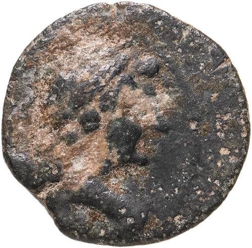 Государство Селевкидов, Антиох VII Эвергет, 138-129 годы до Р.Х., АЕ19.