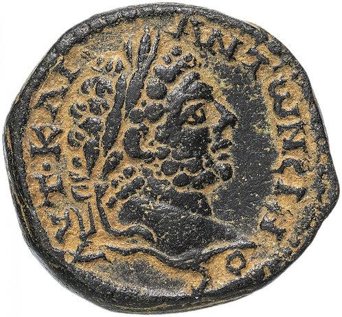 Римская империя, провинция Сирия, Каракалла, 198-217 годы, Асс.