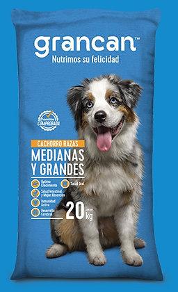 GranCan Cachorro