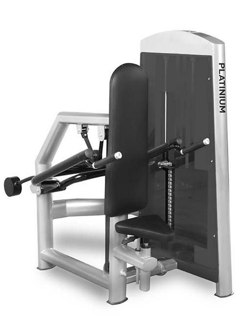 Tricep Dips -  Pin Load Machine