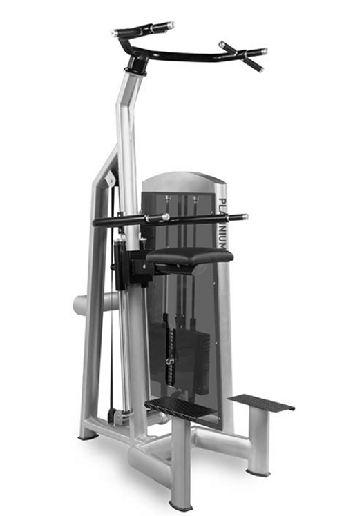 Assisted Chin Up/Dip Station -  Pin Load Machine