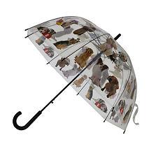 Parapluie Chien.jpg
