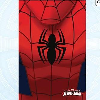 Plaid Spiderman.jpg