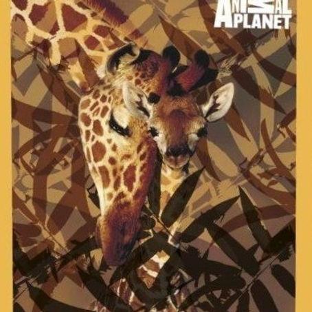 Plaid Polaire Girafe.jpg