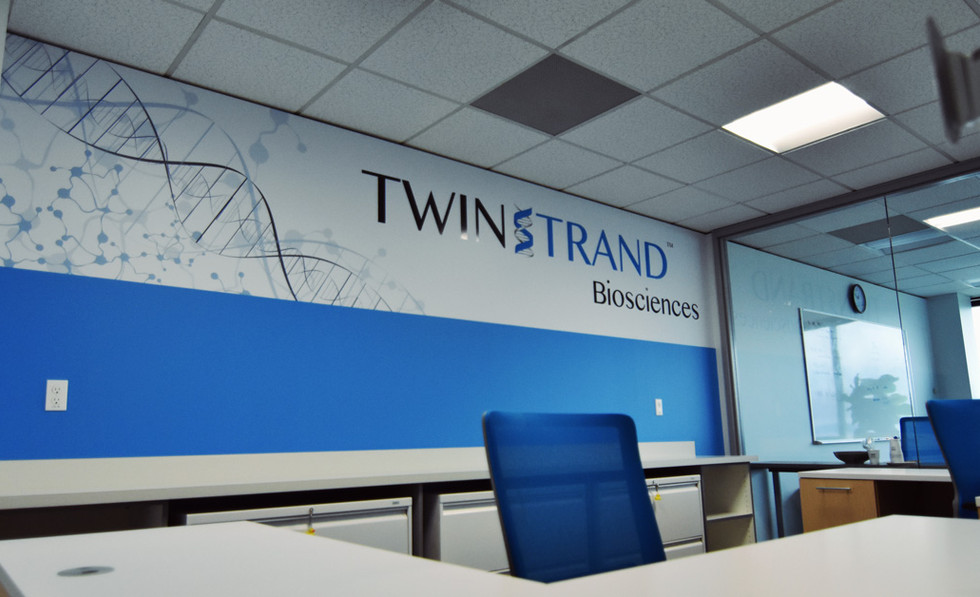 twinstrand-mock.jpg