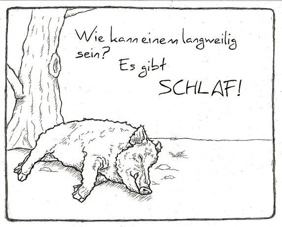Wildschwein Schlaf Kopie.jpg