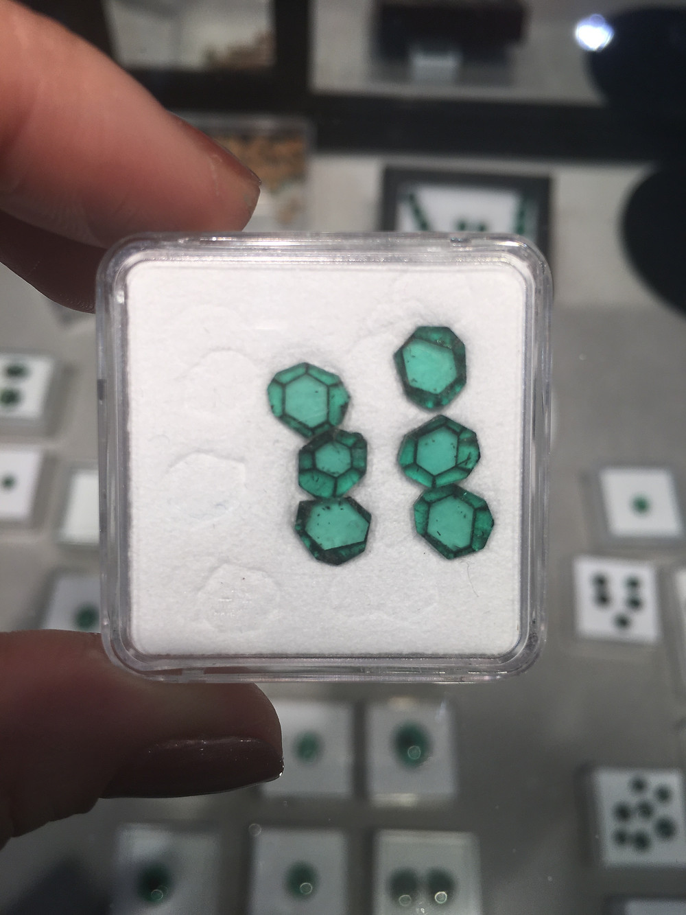 Trapiche Emerald Slices from the Tucson Gemshow 2017