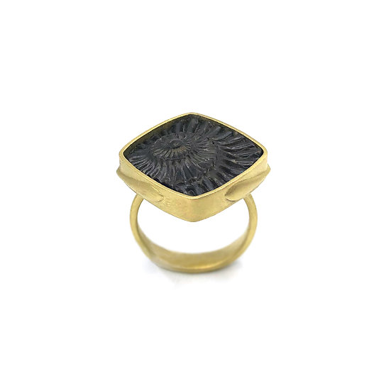 Fossil Ammonite Amazon Ring in 18k Recycled Yellow Gold