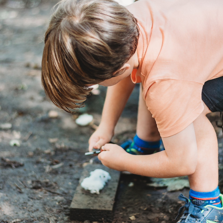 4th Aug Summer Holiday Woodland Activity Day age 5-12   (1)