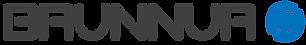 Brunnur_Logo_Large.png