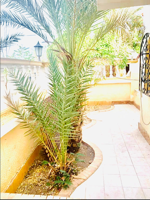 Villa 3 Bedroom For Sale Hadaba
