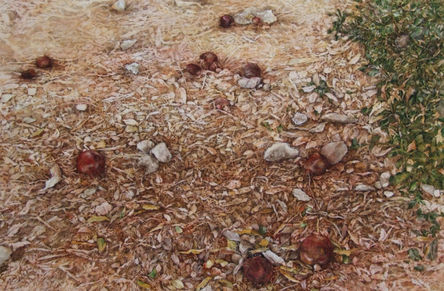 oil on canvas, 100x150, 2009