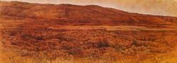 oil on canvas, kumi 80x220, 2013