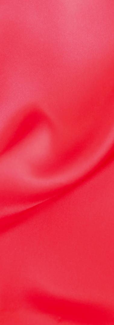 Pointsettier Red
