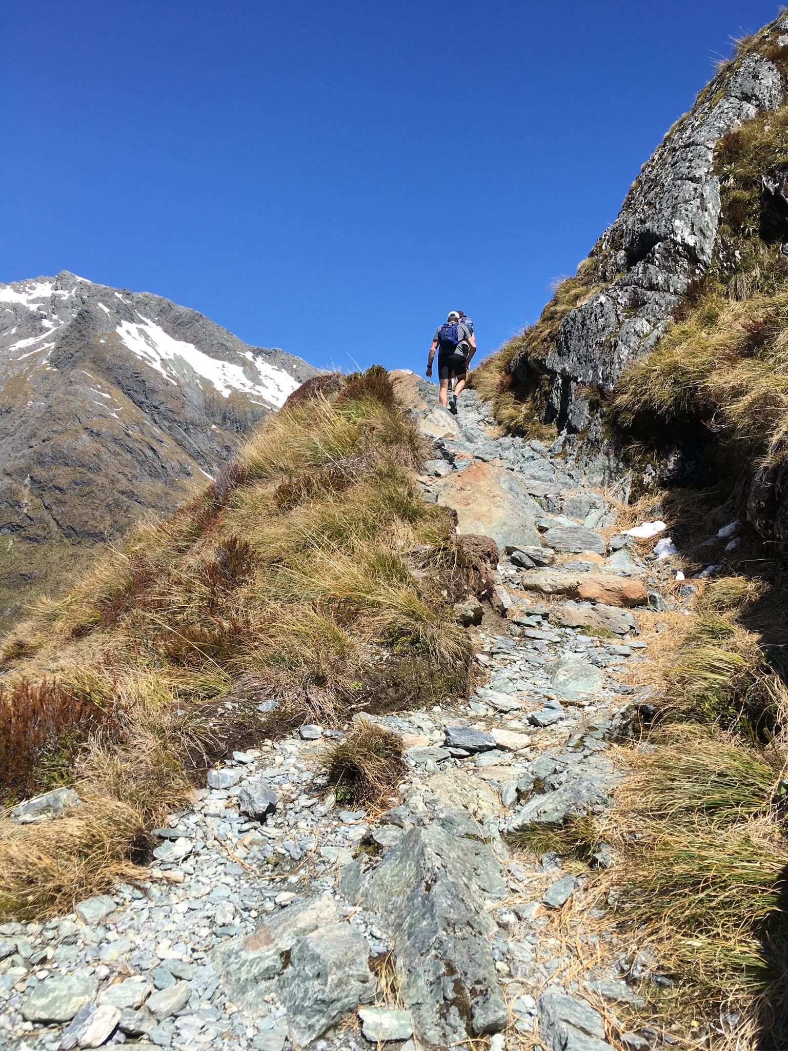 nz hiking2