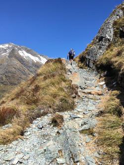 nz hiking2