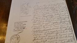 Optional transcripts/translations of records