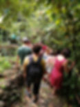 IMG_20190202_110052.jpg