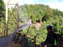 Maramataha bridge, Timber Trail