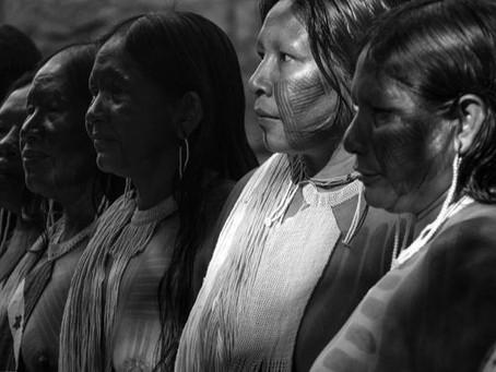 vidas indígenas, causa global