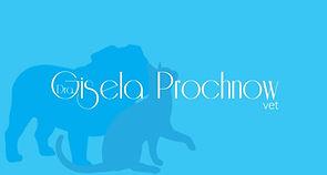 Gisela Prochnow - Médica Veterinária