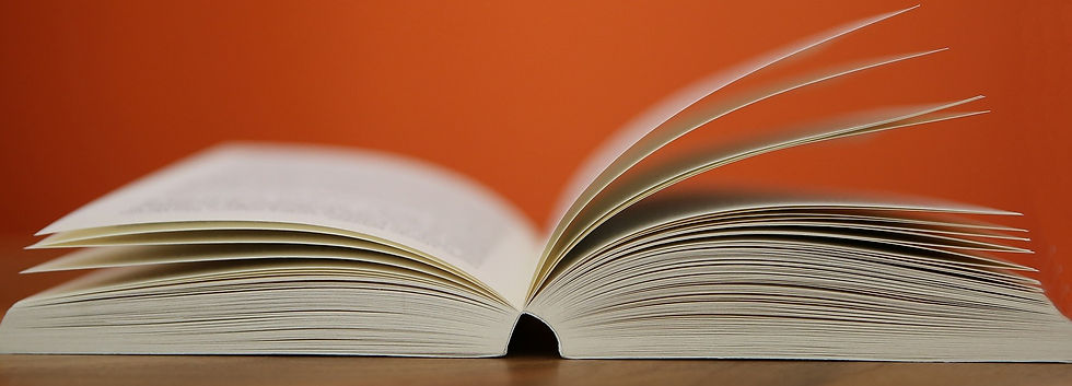 openbook 1a cropped.jpg