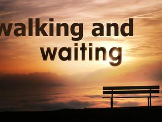 Walking and Waiting
