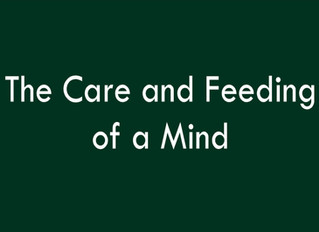 The Care and Feeding of a Mind
