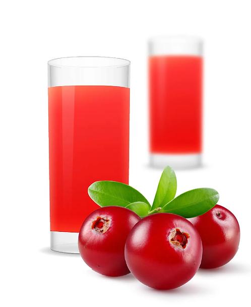 «Основа напитка» КЛЮКВА