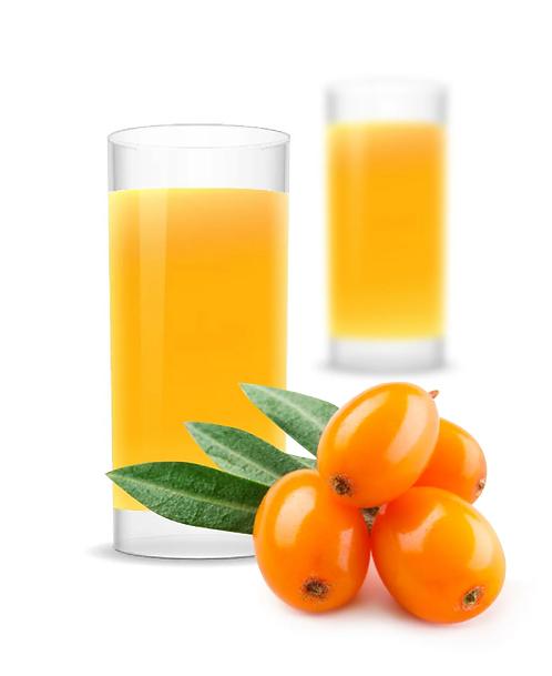 «Основа напитка» ОБЛЕПИХА