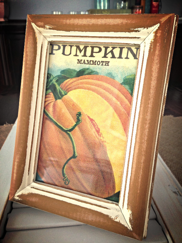 PumpkinMammoth_After_edited.jpg
